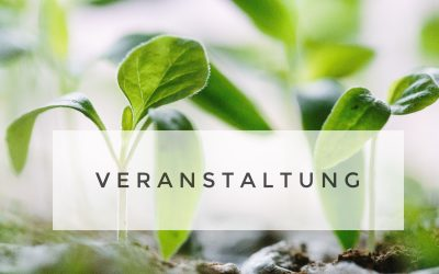 Veranstaltung: Raindrop Technique Massage mit Hot Stones