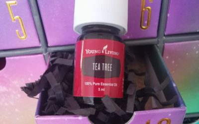 Teebaum Öl (Melaleuca alternifolia) – das ätherische Öl der Klarheit