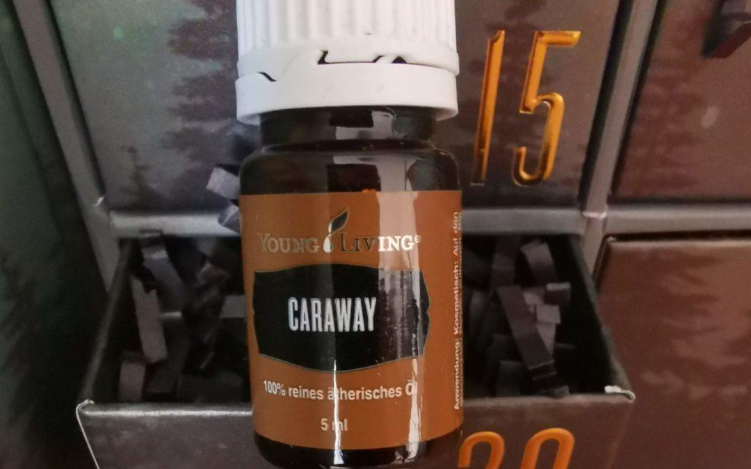 Caraway Öl (Kümmel, Carum carvi) – das ätherische Öl des Verständnis