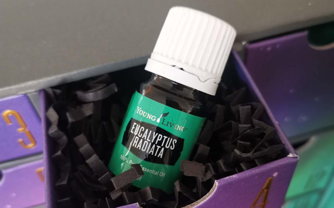 Eukalyptus radiata Öl – das ätherische Öl der Atmung