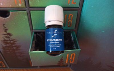 Wintergrün Öl (Gaultheria procumbens) – das ätherische Öl der Wandlung