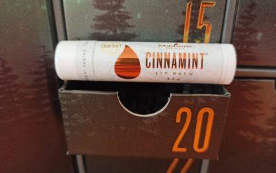 Cinnamint Lip Balm – Zimt Lippenbalsam für gesunde Lippen