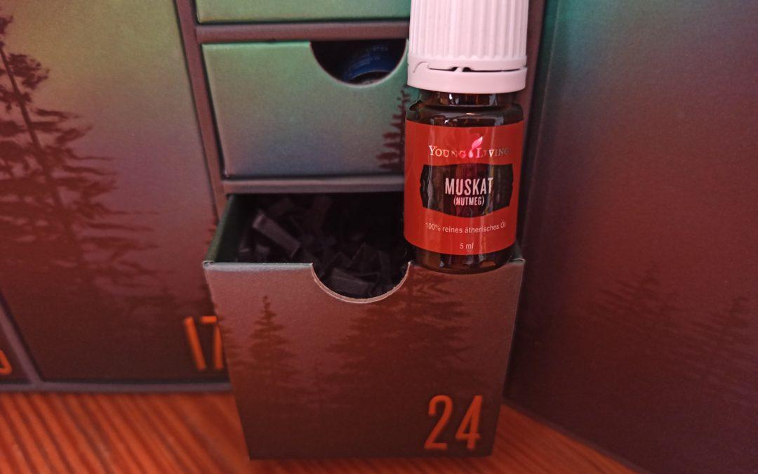 Muskatnuss Öl (Mystic fragrans) – das ätherische Öl der Stärkung
