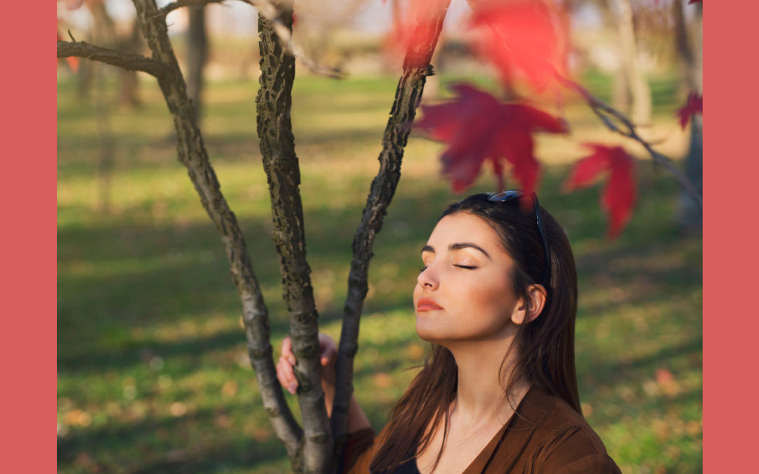 Stress loslassen, zu Energie, Freude und Kreativität finden
